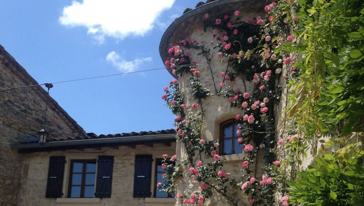 La tour et les roses